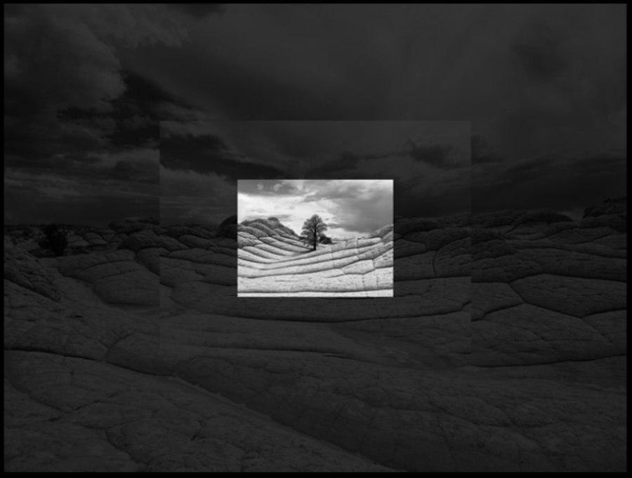 iPhone11Proの望遠カメラと広角カメラの違い