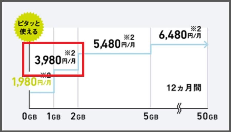 ミニモンスターの2GB