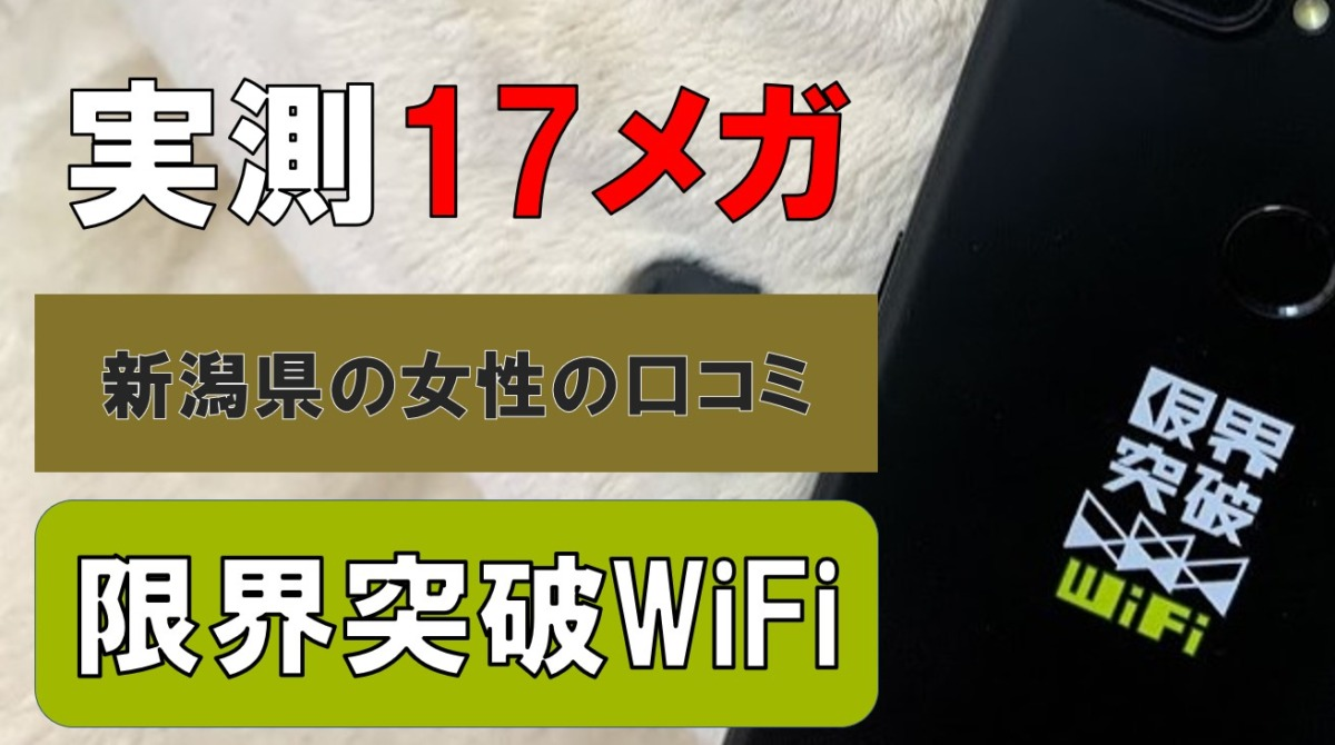 実測17メガ!限界突破WiFiの速度を新潟県十日町市で調査|27歳女性の口コミ・評判